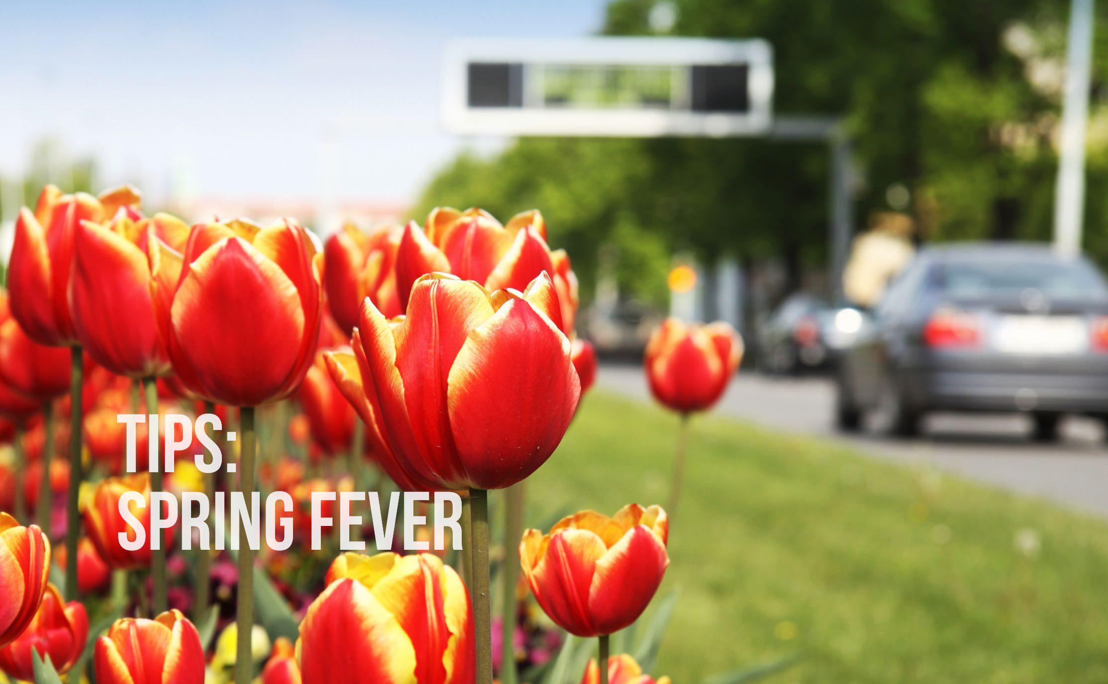 Tips: Spring Fever