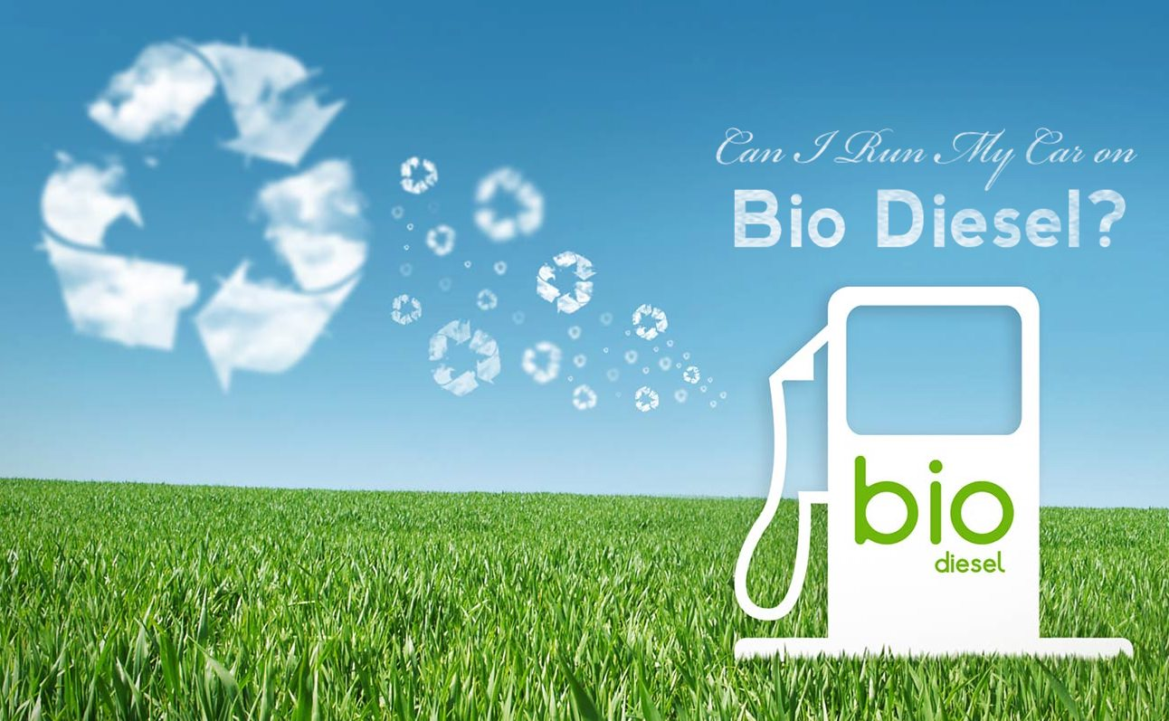 Can I Run My Car On Bio Diesel?