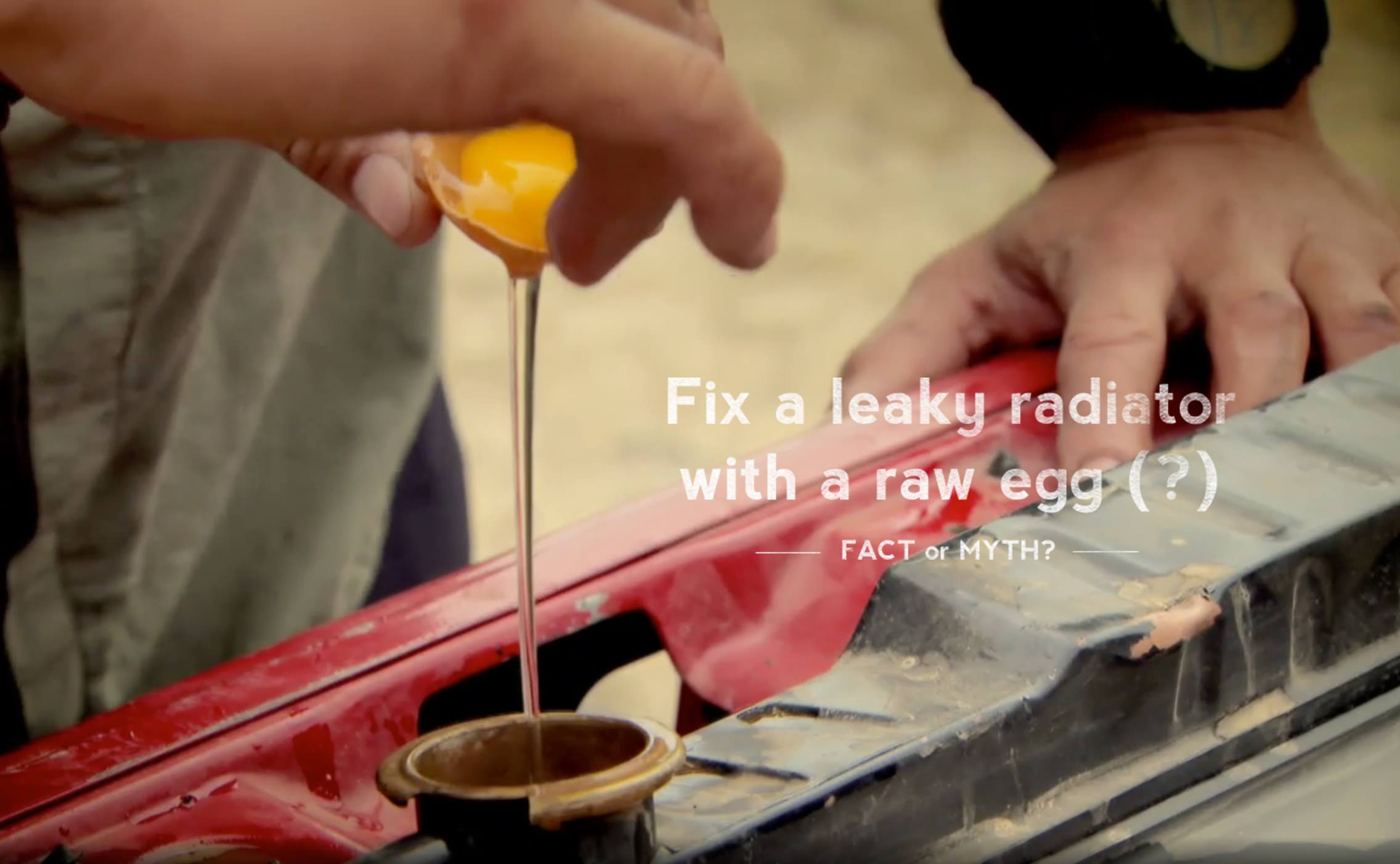Fix a Leak With a Raw Egg: Fact or Myth?