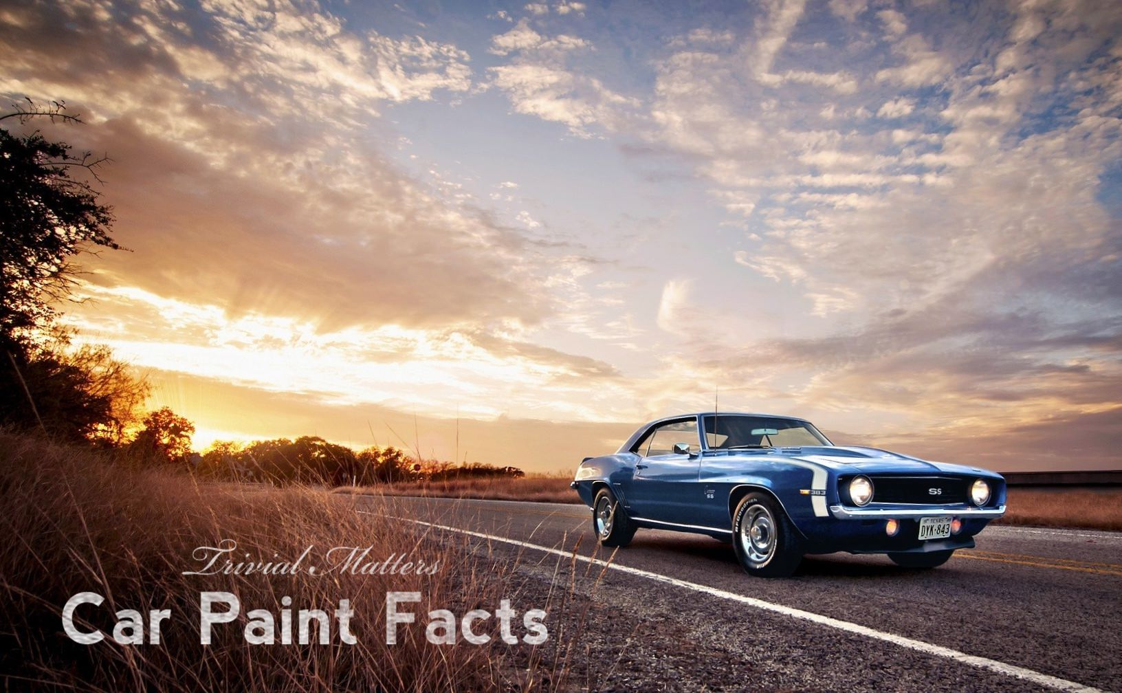 Trivial Matters: Crazy Car Paint Trivia